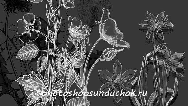 Кисти цветов для фотошопа